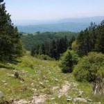 Monte Livata